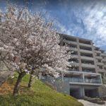三方向解放の素敵なマンション・横浜三ツ池パークホームズ